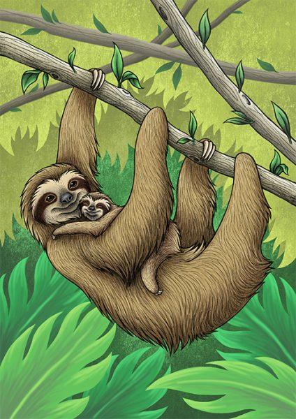 Three-Toed Sloths - Lyndsey Green Illustration