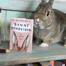 Bunny Zine