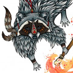 How the Raccoon Got His Coat
