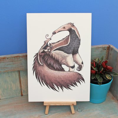 Giant Anteaters Illustration – A3 Print