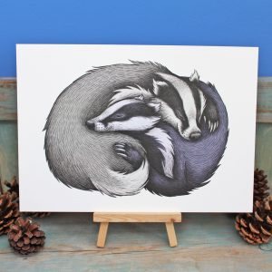 Badger Couple Illustration – A4 Print