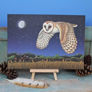 Barn Owl Illustration – A4 Print