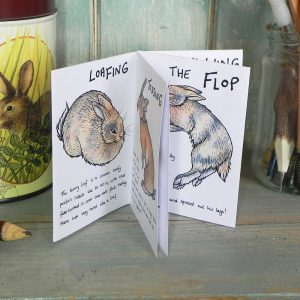 The Tiny Little Book of Bunny Behaviour