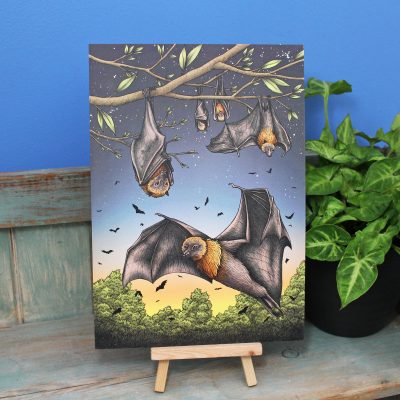 Rodrigues Fruit Bats Illustration – A4 Print
