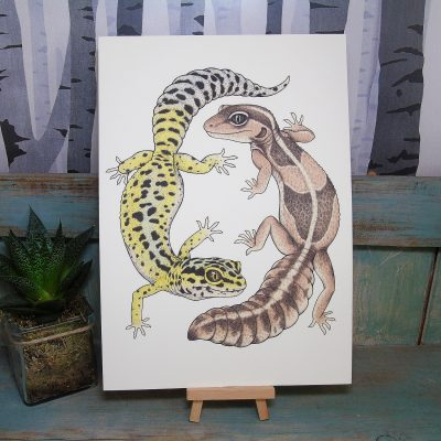Geckos Illustration – A4 Print
