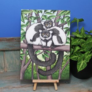 Black and White Ruffed Lemurs Illustration – A4 Print
