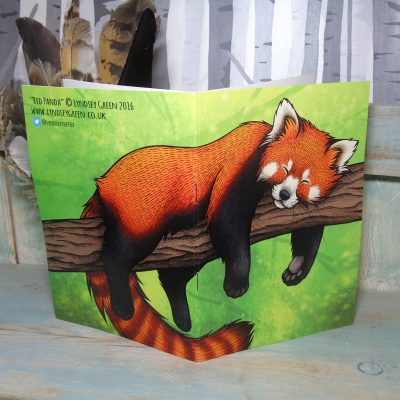 Red Panda Illustration Notebook
