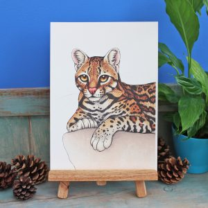 Ocelot Illustration – A4 Print