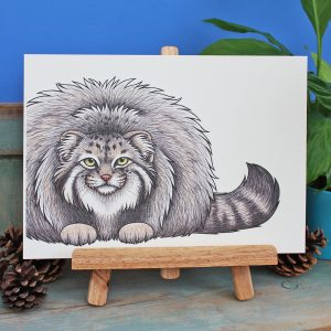 Pallas's Cat Illustration – A4 Print