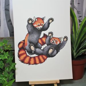 Red Pandas Playing Illustration – A4 Print