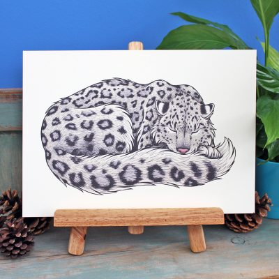 Snow Leopard Illustration – A4 Print