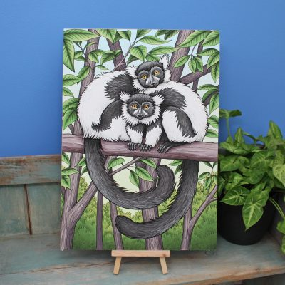 Black and White Ruffed Lemurs Illustration – A3 Giclée Print