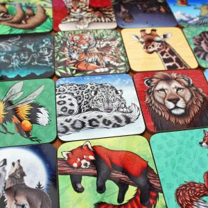 Any 4 Illustrated Coasters Offer
