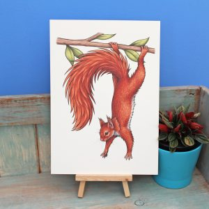 Red Squirrel Illustration – A4 Print